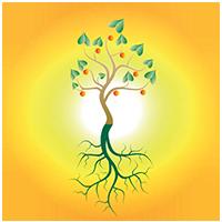 zinzichttraining-logo